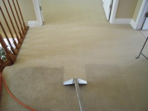 Carpet Cleaning Cape cod