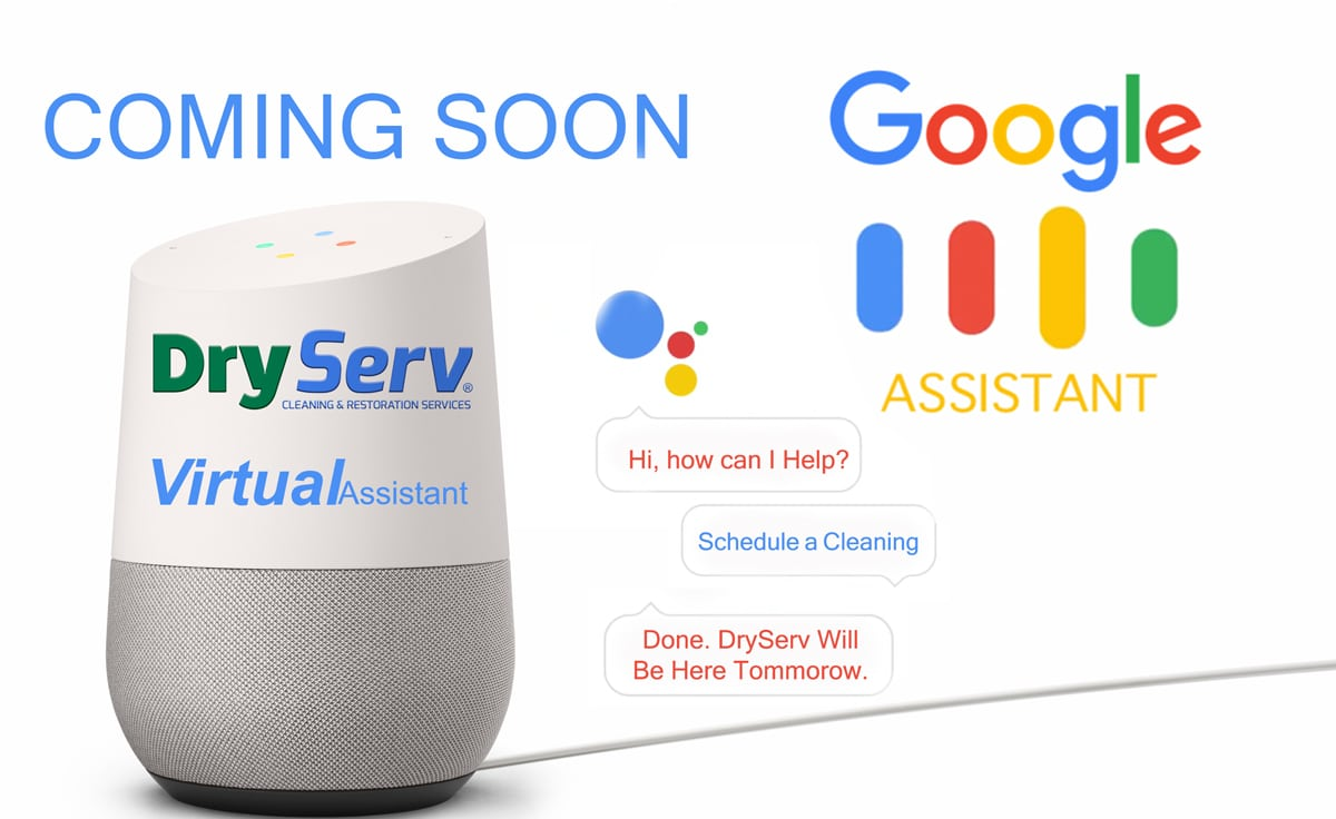 DryServ Assistant